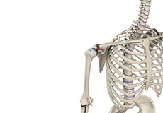 acromioclavicular-or-ac-joint-injuries